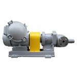 Gear pump MCR